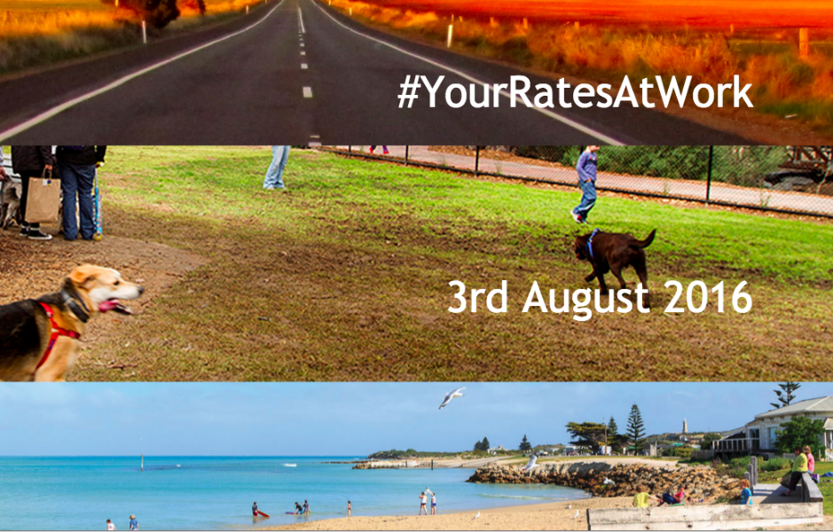 Guest post: #yourratesatwork, get a behind-the-scenes look at your local council