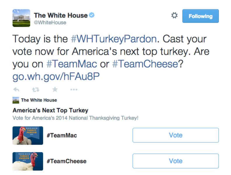 White House turkeys go beak-to-beak in a vote happening #OnlyOnTwitter