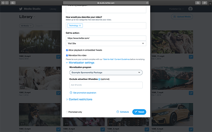 6. You can update additional monetization metadata (optional):
