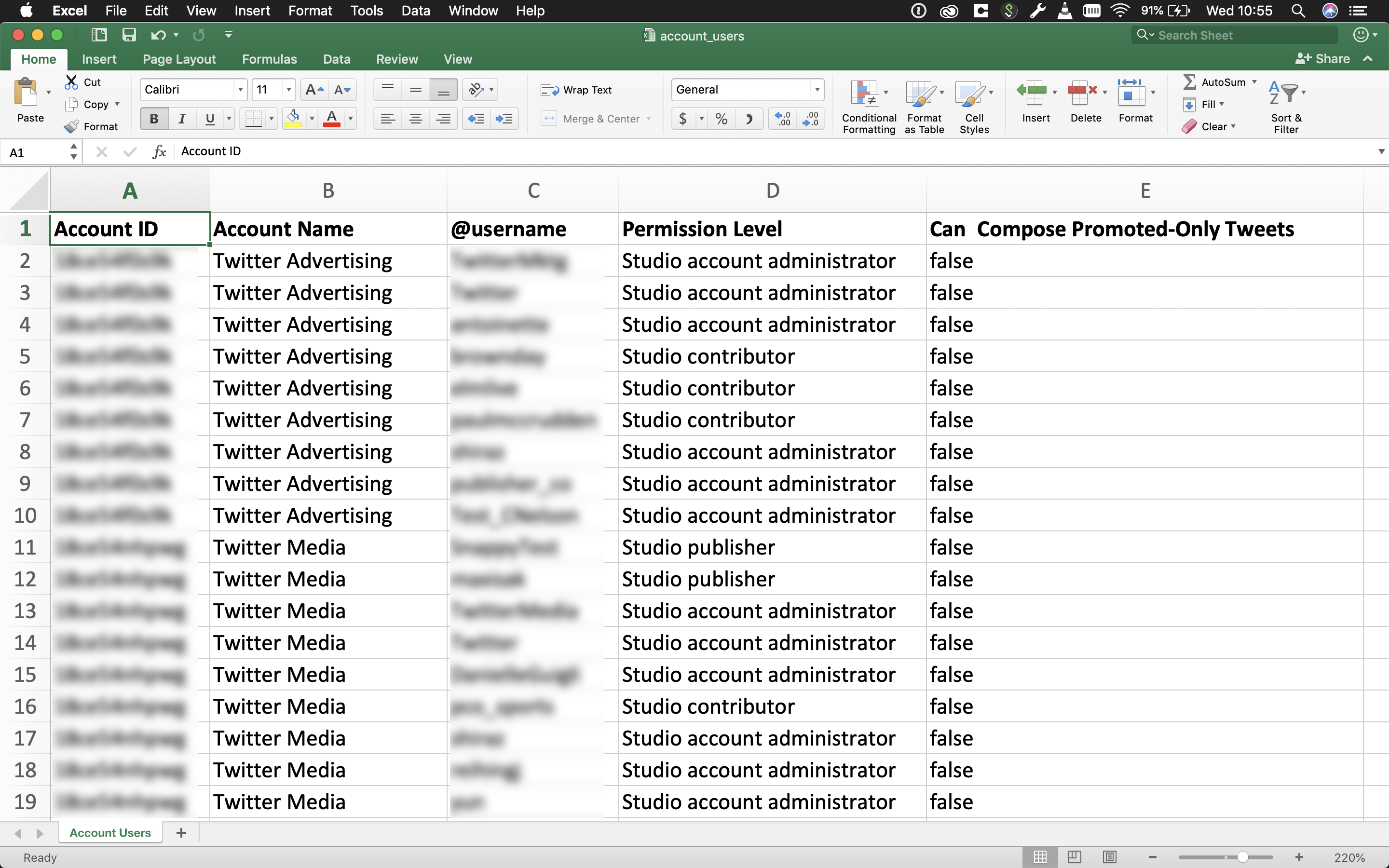 5. Open the template in your preferred spreadsheet application.